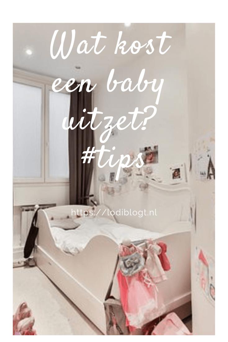 Wat kost een baby uitzet? #tips