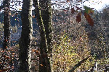 20 tips voor een fijne herfst periode