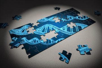 3D puzzels van Ravensburger, ook leuk voor volwassenen