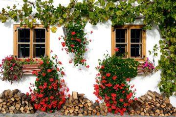 Tuinplanten inspiratie voor in een Bohemian tuin